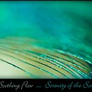 Serenity of the Soul by Joy  Gerow