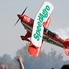 Show aircraft does a very low pass near the crowd by Philippe Widling
