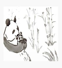 Panda Sumi-e  Photographic Print