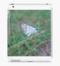 Spring Azure butterfly with an ant iPad Case/Skin