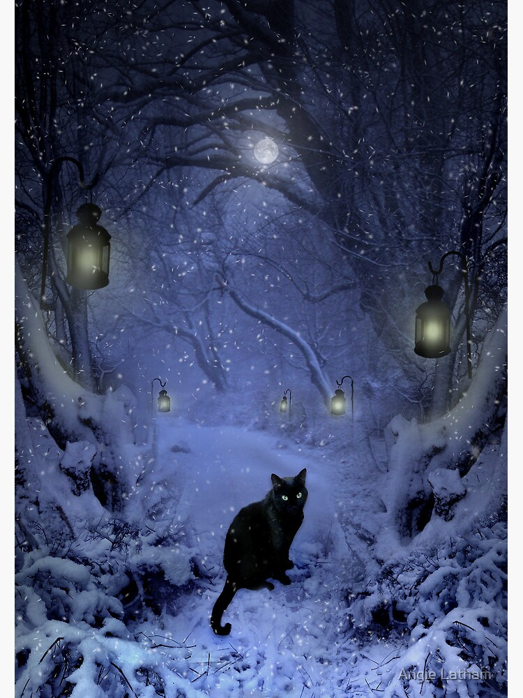 Frostar Midnight by AngelaBarnett
