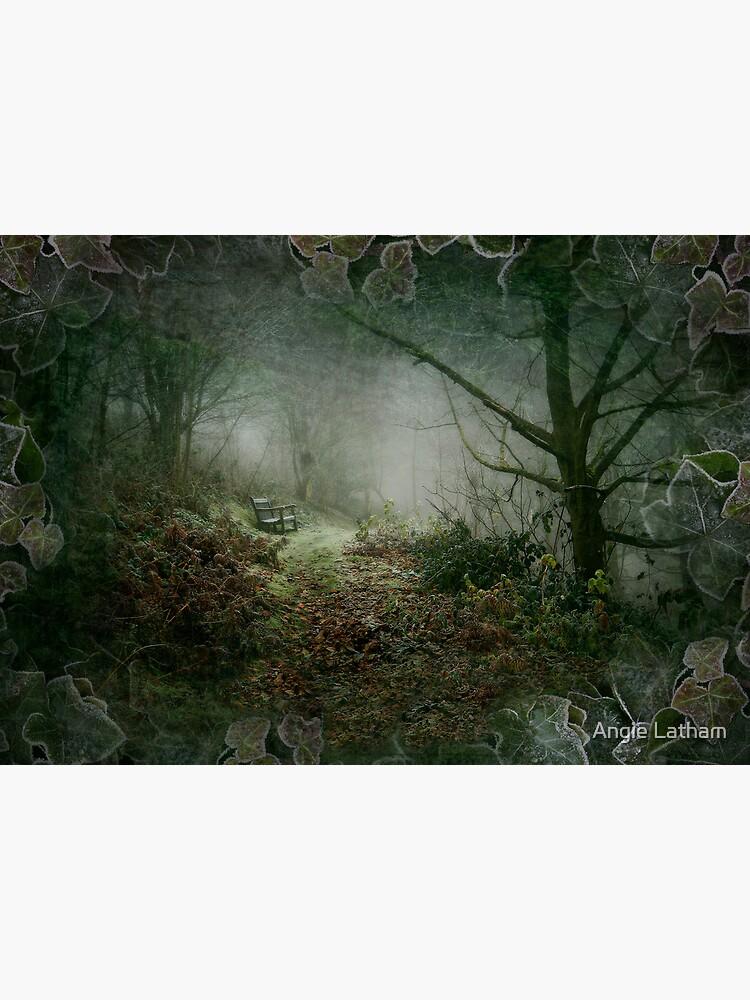 A Winter's Walk by AngelaBarnett
