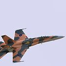 F18 Hornet by Philippe Widling