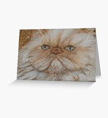 kitty kaboodle Greeting Card