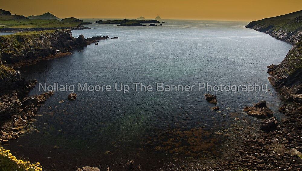 Ring Of Kerry, Skellig Island, County Kerry, Ireland by Noel Moore Up The Banner Photography