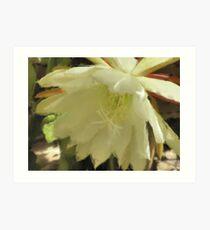 Pastel Flower -Close Up Art Print