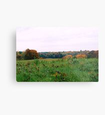 Farm Field Metal Print
