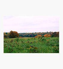 Farm Field Photographic Print