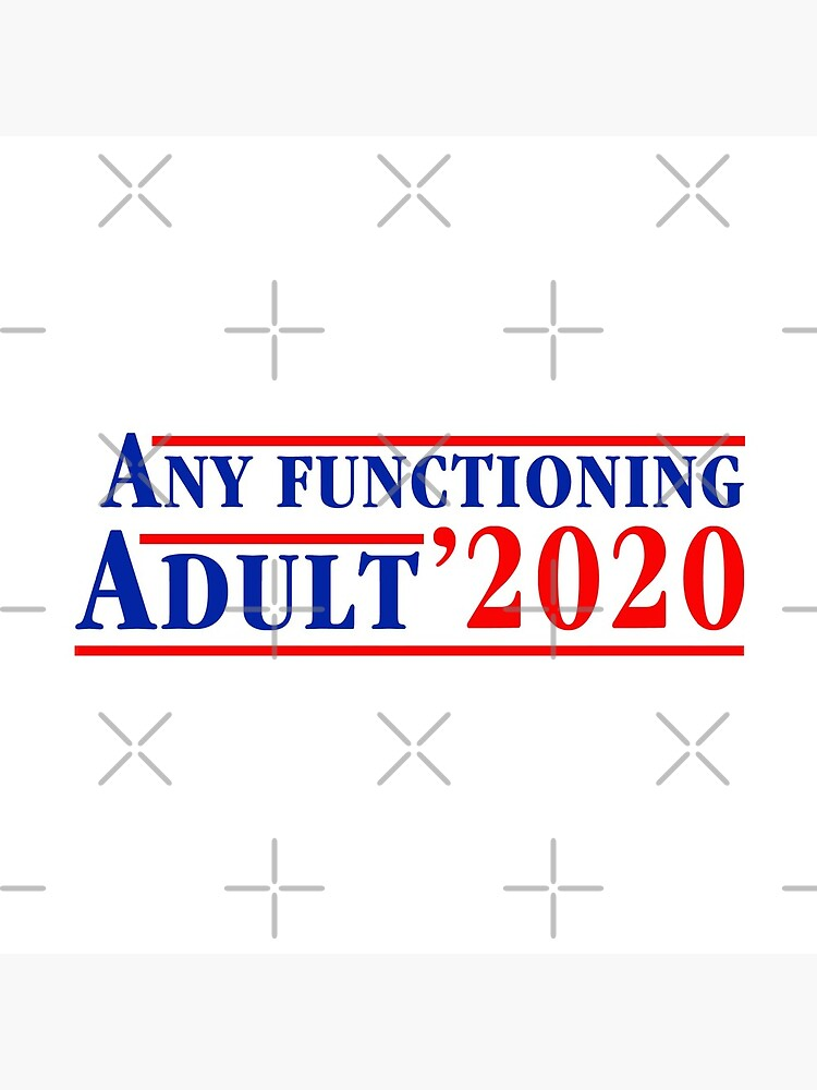 Any Functioning Adult 2020 by Thelittlelord