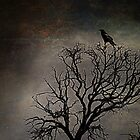 Black Bird Fly by Randy Turnbow