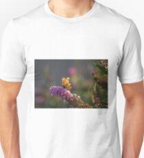 Tattered T-Shirt