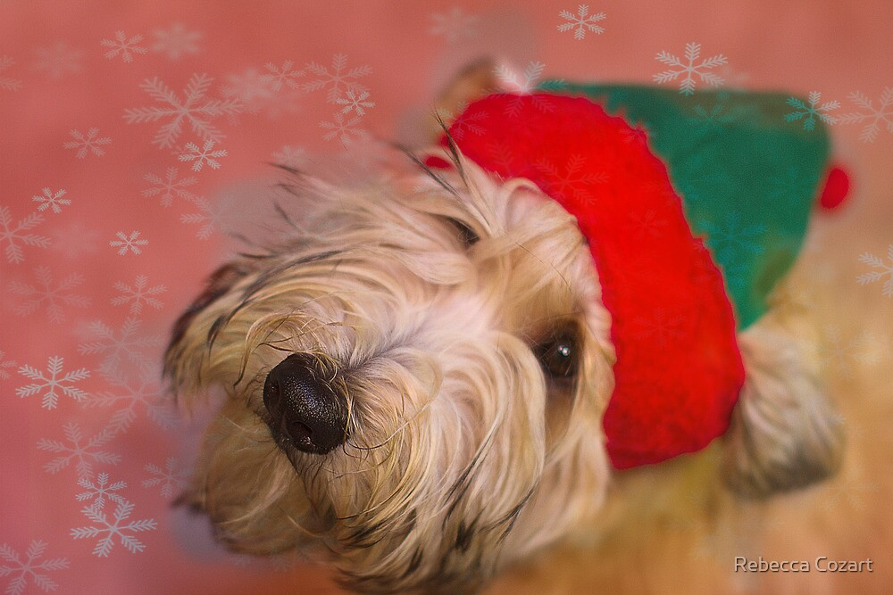 Wheatie Elf by Rebecca Cozart