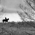 On the horizon by Vendla