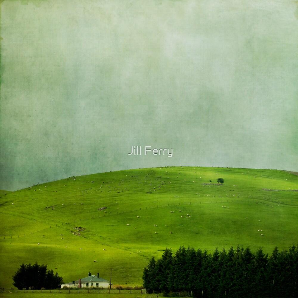Homestead by Jill Ferry