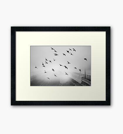 With Wings at a Standstill Framed Print