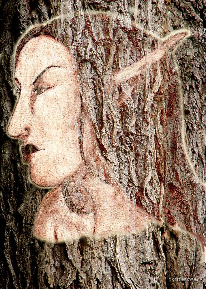 Tree Nymph by tkrosevear