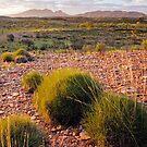 Mt Somder by Steven Pearce