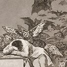 The Sleep of Reason Produces Monsters - Francisco Goya by themasters