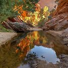 Waterhole, Hugh Gorge by Kevin McGennan