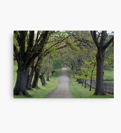 pretty when you're just visiting Canvas Print