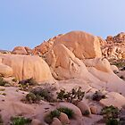 Jumbo rocks campground panorama by Flux Photography