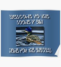 WELCOME TO THE LOONEY BIN>>HOME FOR THE UNUSUAL>>PILLOWS-JOURNAL-TOTE BAG-BOOK-TEE SHIRTS ECT.. Poster