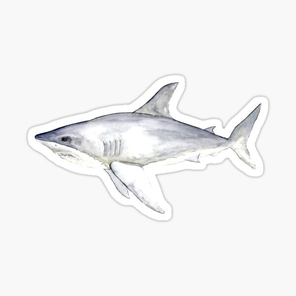 Great White Shark Sticker