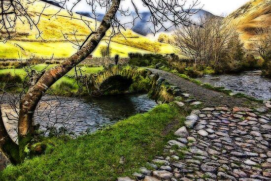 Bridge Approach  - Wasdale Head by Trevor Kersley