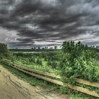 Winds of July by Myron Watamaniuk