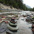 Rock Creek, Montana by phillipcmiller