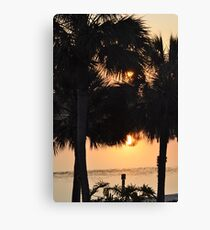 Reflections Between the Palms Canvas Print