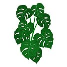 Hand Painted Monstera Deliciosa Tropical Houseplant Art by Chee Sim