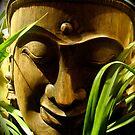 Buddha by kim powell