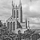 St Edmundsbury Cathedral by DaleReynolds