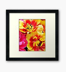 Bright Yellow & Pink Flowers Framed Print
