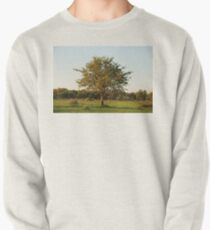 madikwe tree, south africa Pullover