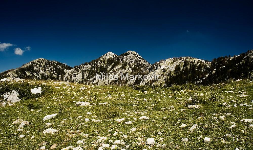 Mt. Orijen by Milos Markovic
