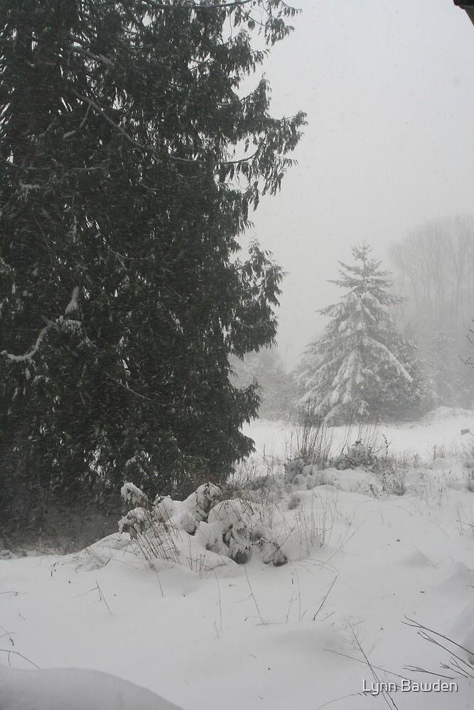 """""""Snowing Heavily"""" by Lynn Bawden"""