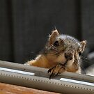 Hey There ... What's for Breakfast? by Barb Miller