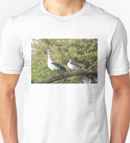 morning perch.  knob-billed duck. T-Shirt