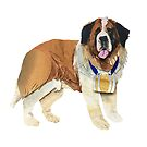 The Saint Bernard by SarahSnippets