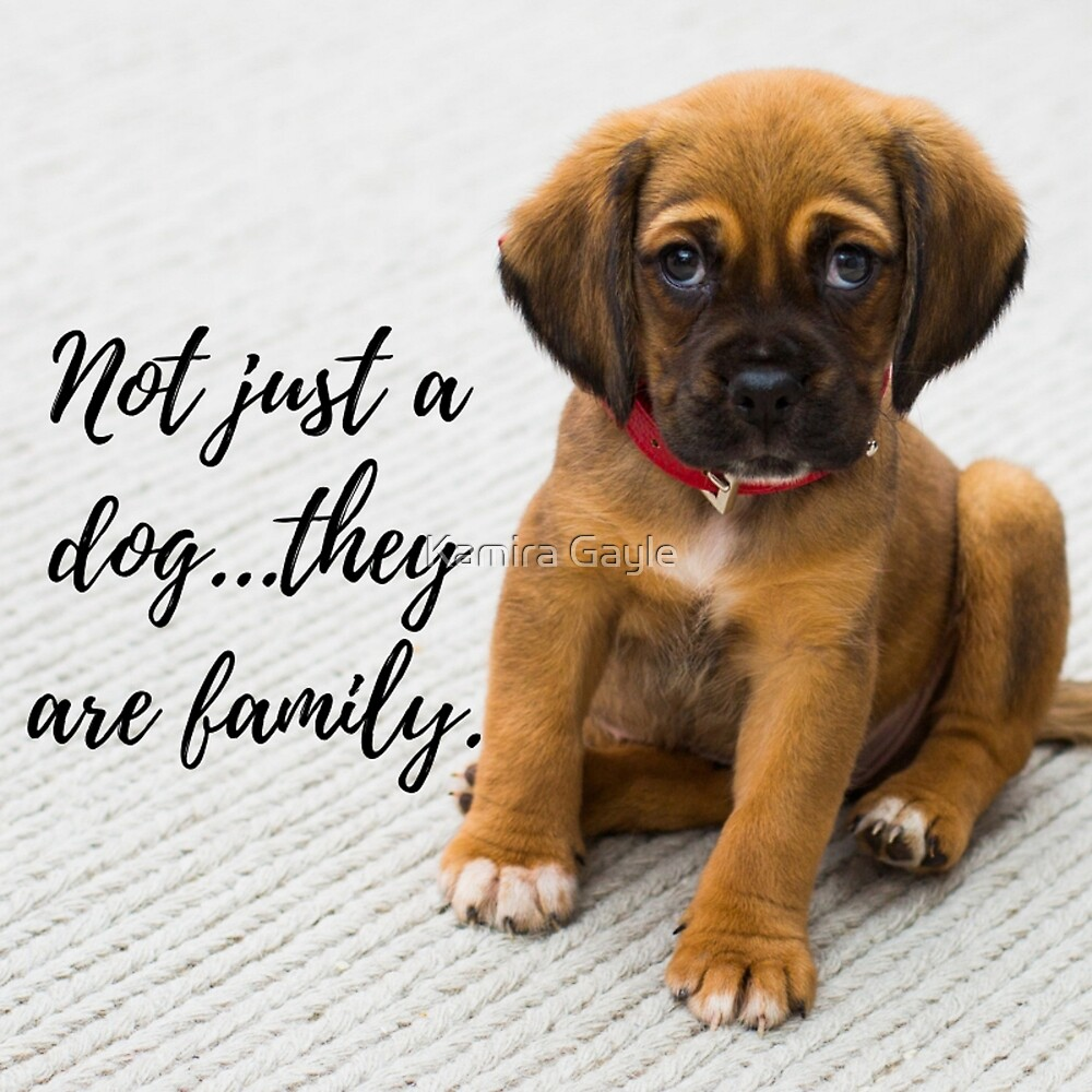 Not just a dog...they are family. by Kamira Gayle