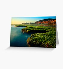 Low Tide at Sphinx Rock Greeting Card
