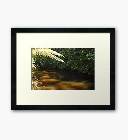 Fernglade... Framed Print