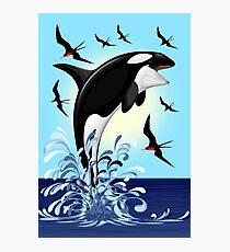 Orca Killer Whale jumping Photographic Print