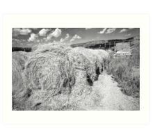 Hay near Dry Cimarron Highway Art Print