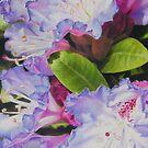 Rhododendron by Heidi Schwandt Garner