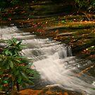 Downstream by Chelei