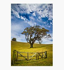 Earth and Air Photographic Print
