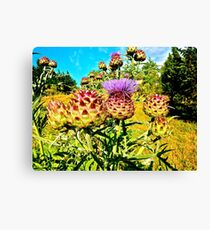 Psychedelic Vegetable OVERLOAD Canvas Print